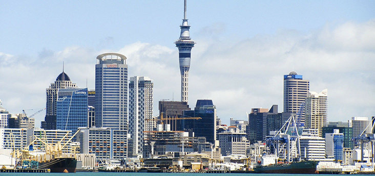 Addressing Workforce Challenges in NZ